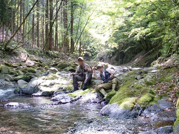 新緑キラキラして 谷を遡る