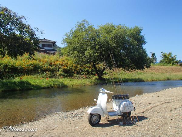 初秋のOp川、Ko川遊び