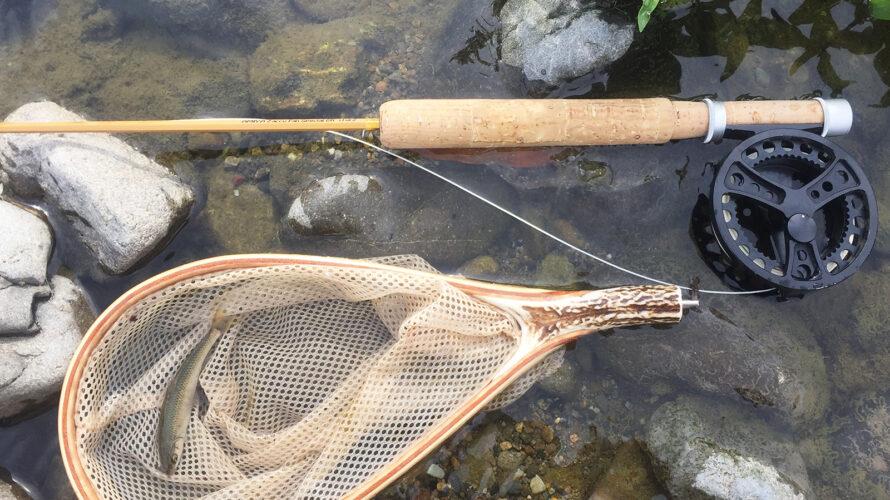 GWの過ごし方③  Og川でオイカワと遊ぶ